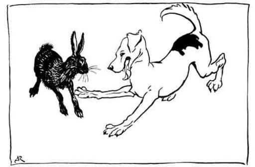 Le chien de chasse et le lièvre