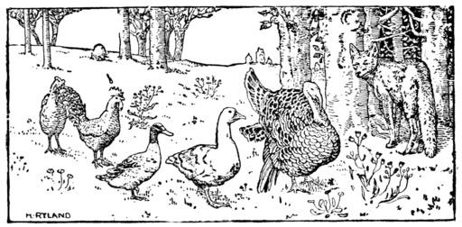 Le conte de Pouli-Poulette