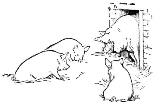 Le conte des trois petits cochons