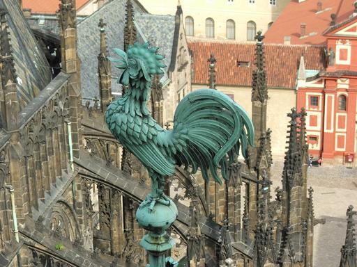 Le coq de Prague