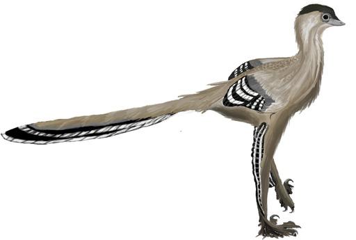 Le dinosaure Meilong