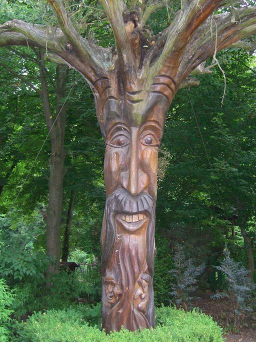Le gnome-arbre