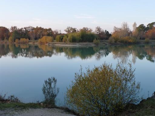 Le lac vert à Canéjan en décembre