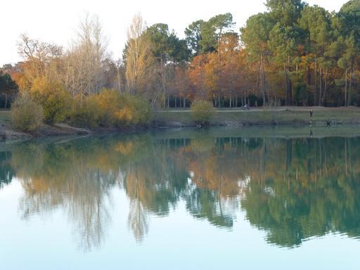 Le lac vert de Canéjan en automne