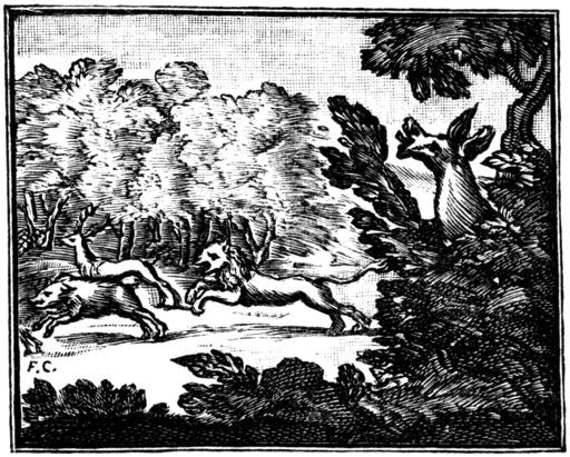 Le lion et l'âne chassant