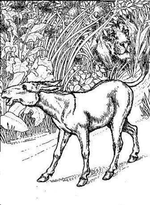 Le Lion et l'Ane chassant