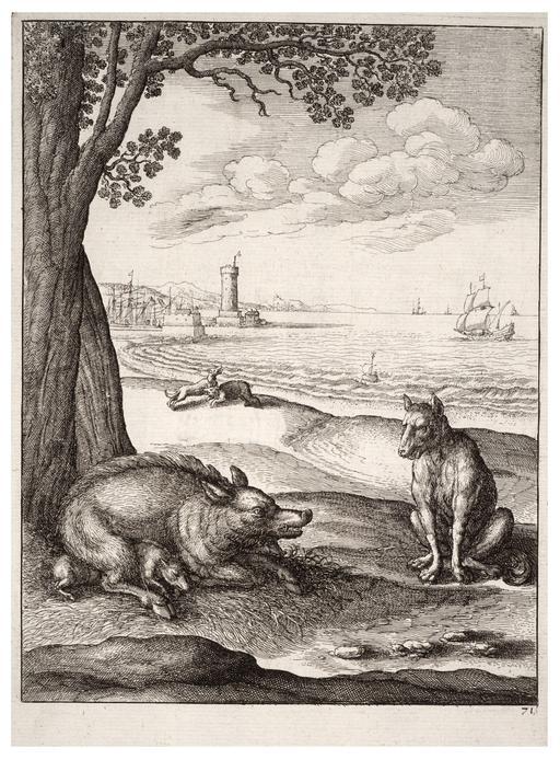 Le loup et la truie