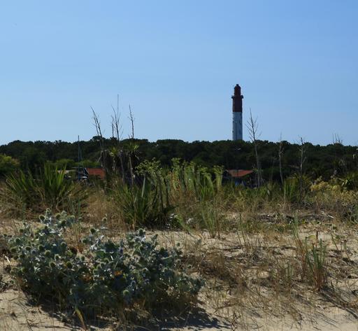 Le phare du Cap-Ferret