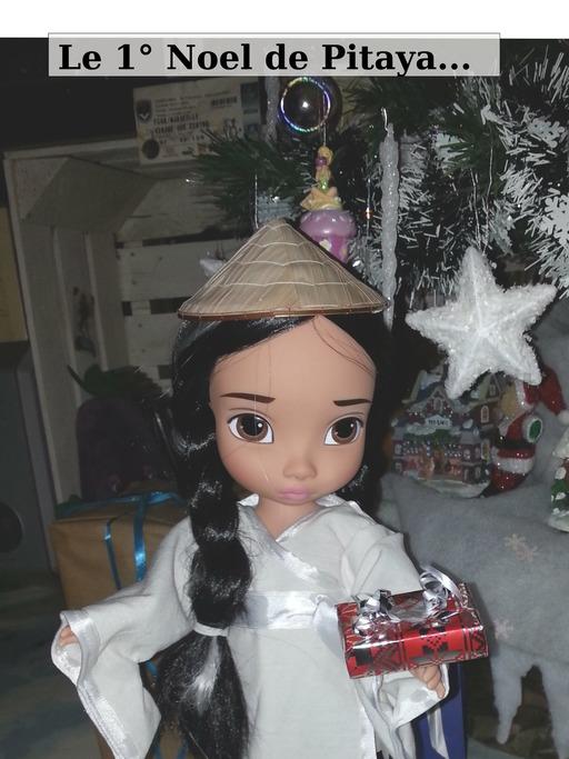 Le premier Noël de Pitaya - 00