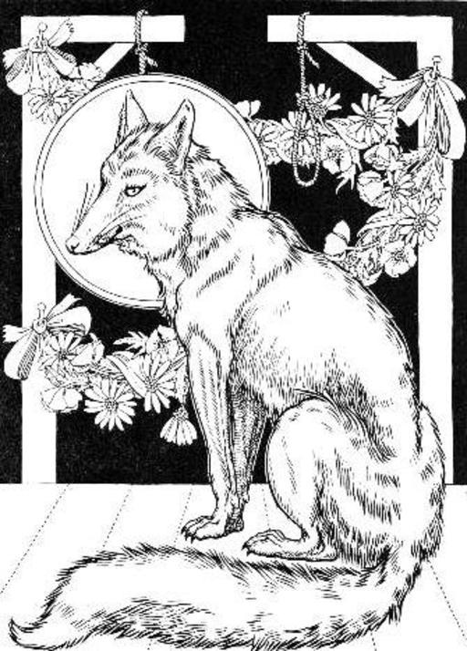 Le renard anglais