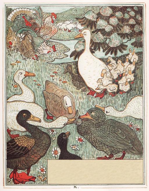 Le vilain petit canard - 11