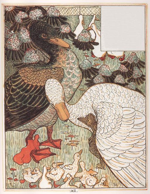 Le vilain petit canard - 12