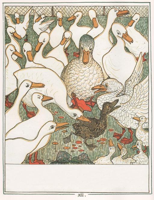 Le vilain petit canard - 13