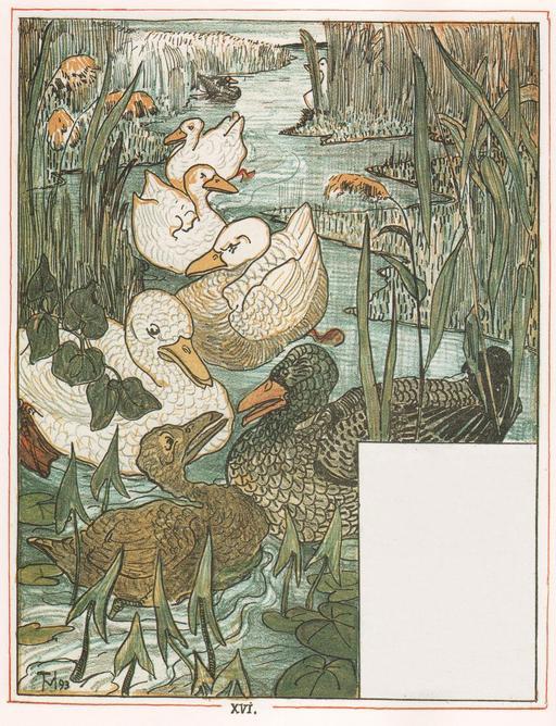 Le vilain petit canard - 17