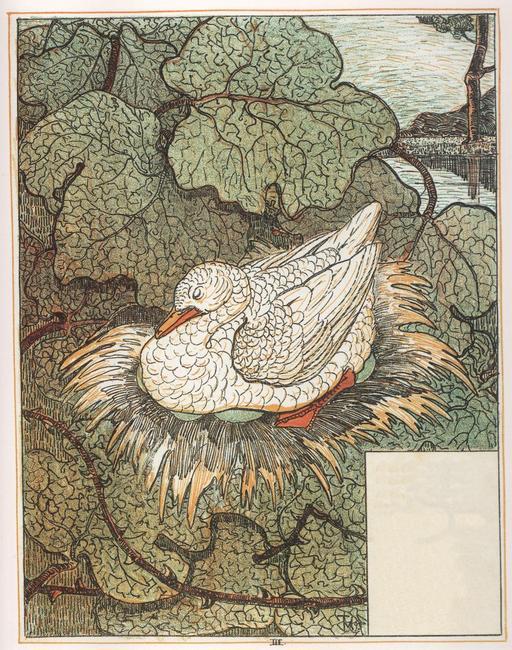 Le vilain petit canard - 4