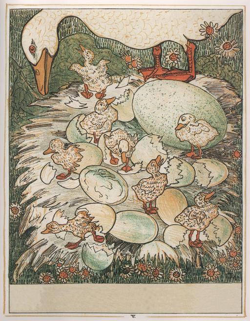 Le vilain petit canard - 6