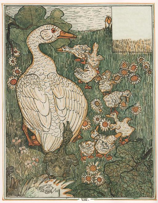 Le vilain petit canard - 9