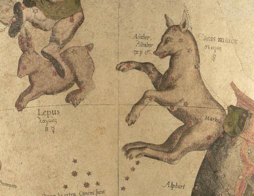 Lepus et Canis Major au 16ème siècle