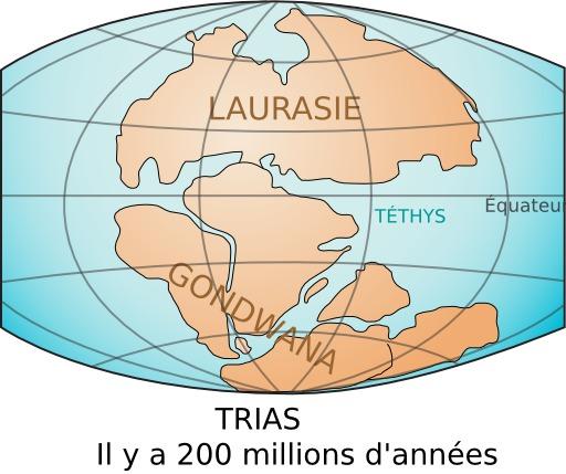 Les continents Gondwana et Laurasie au Trias