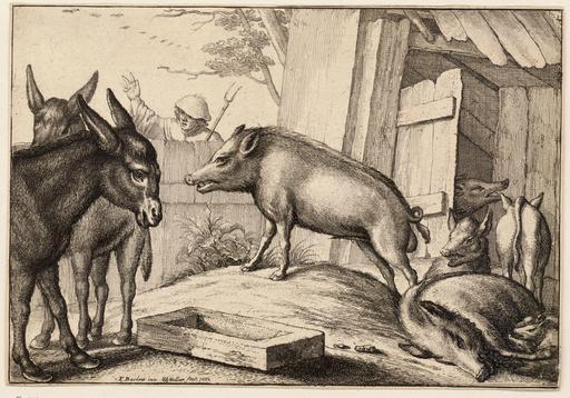 Les deux ânes et les cochons