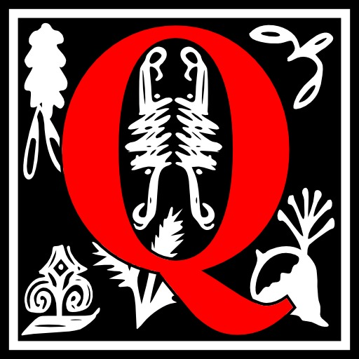 Lettre initiale Q