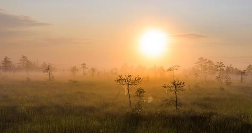 Lever de soleil en Estonie