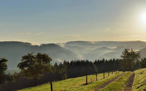 Lever de soleil en Forêt-Noire