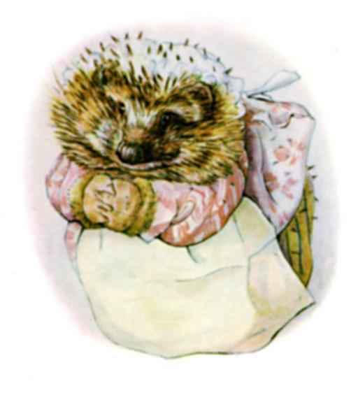 Madame Pique-Dru, couverture