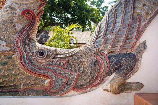 Makara tenant un coelacanthe