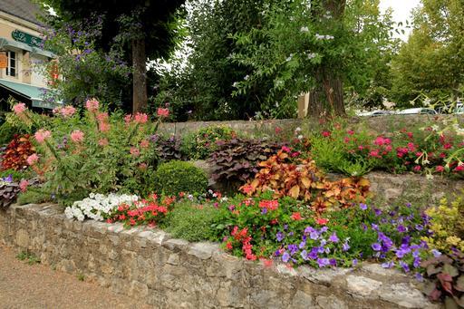 Massif de fleurs en ville au mois d'août
