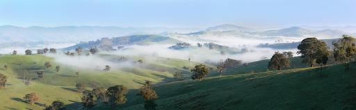 Matin brumeux en Australie