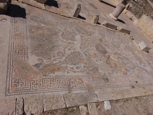 Mosaïque byzantine à décor végétal à Jerash