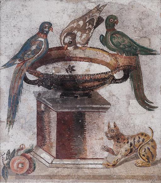 Mosaïque des oiseaux se désaltérant