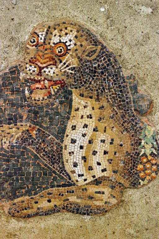 Mosaïque du léopard