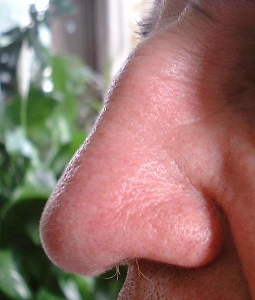 Nez d'homme