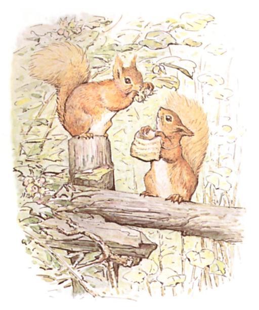 Noisette l'écureuil - 1