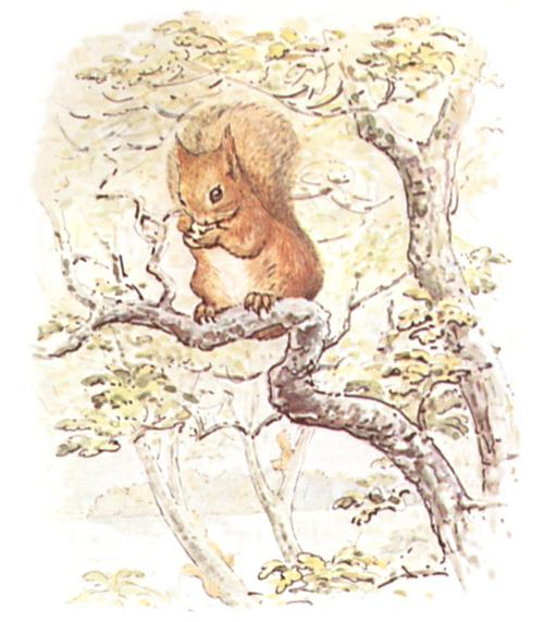 Noisette l'écureuil - 2