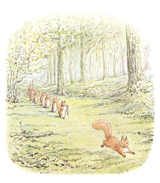 Noisette l'écureuil - 14