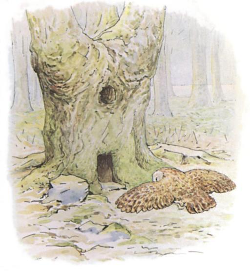 Noisette l'écureuil - 3