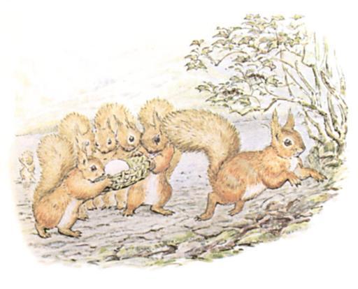 Noisette l'écureuil - 20