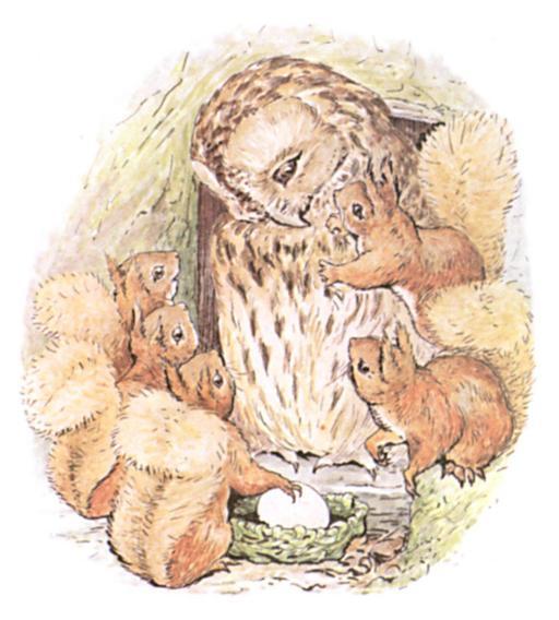 Noisette l'écureuil - 21