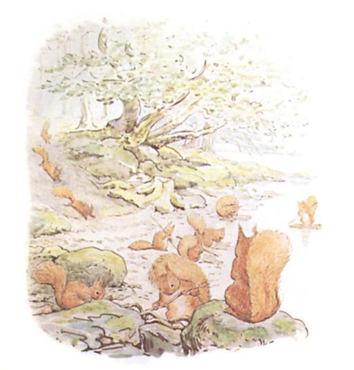 Noisette l'écureuil - 4