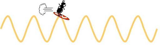 Onde lumineuse surfée par une fourmi