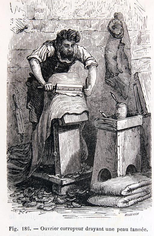 Ouvrier corroyeur nettoyant une peau