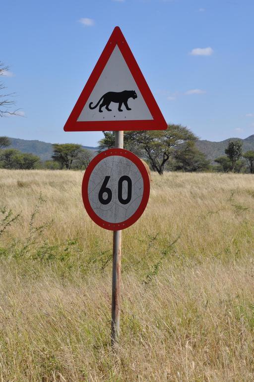 Panneau de risque de léopards