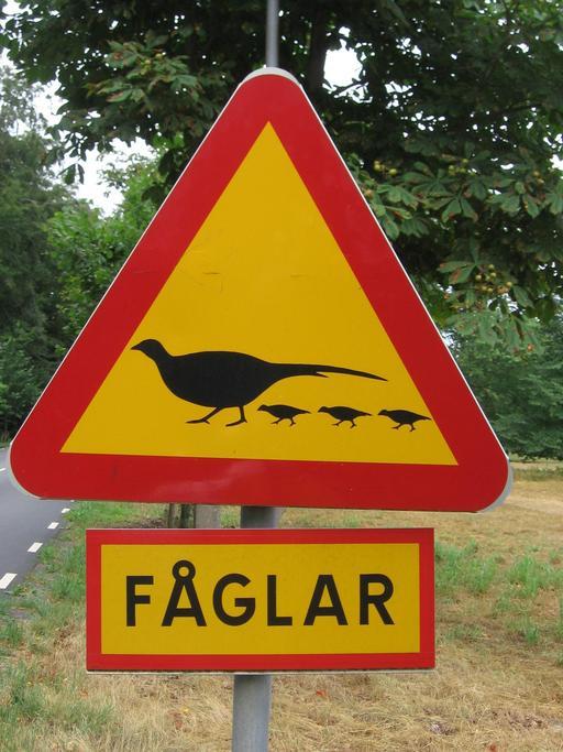 Panneau suédois de risque de faisans