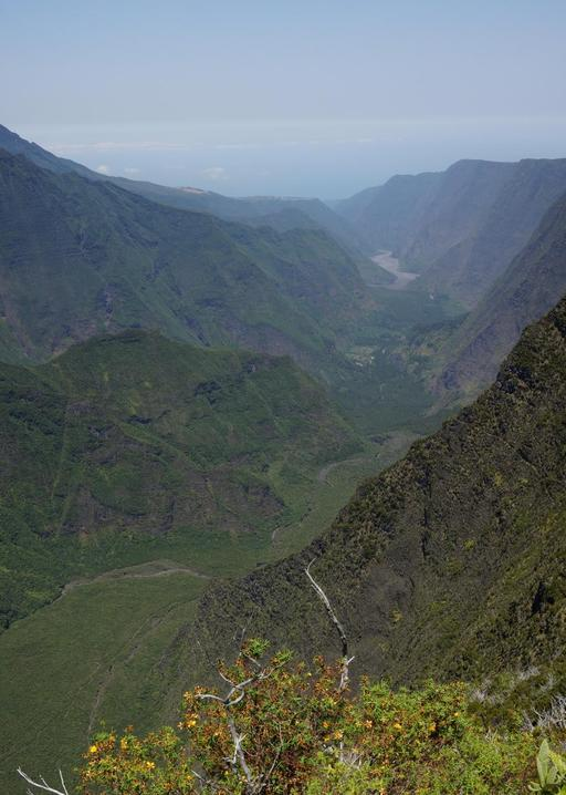 Panorama sur la Rivière des remparts