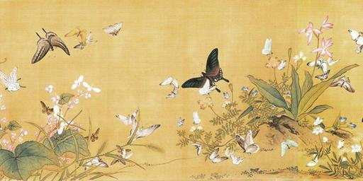 Papillons à foison