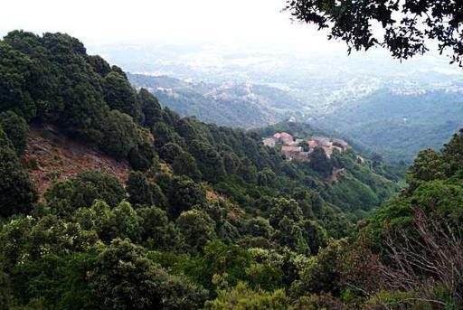 Paysage de Haute-Corse