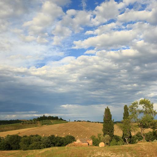 Paysage de Toscane après la moisson